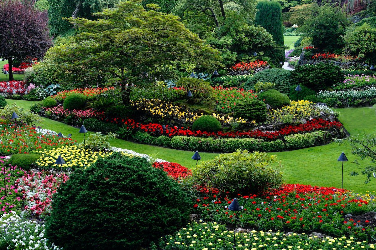 cocommercial landscape company makes colorful gardens