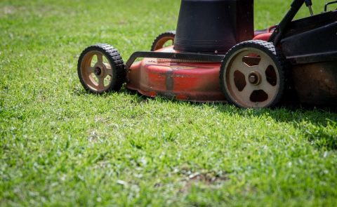 commercial landscaping company doesn't use push mowers