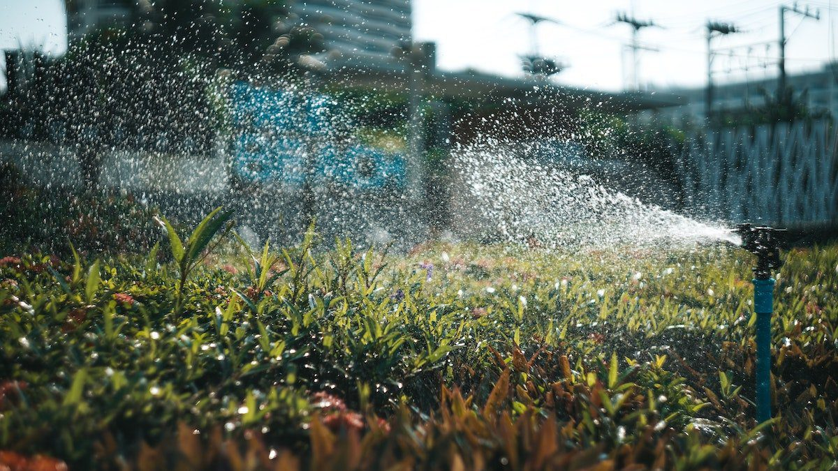 commercial landscape problems example sovled with good irrigation system
